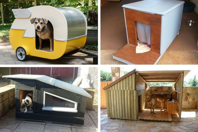10 incredible diy dog houses with plans cuteness rh cuteness com