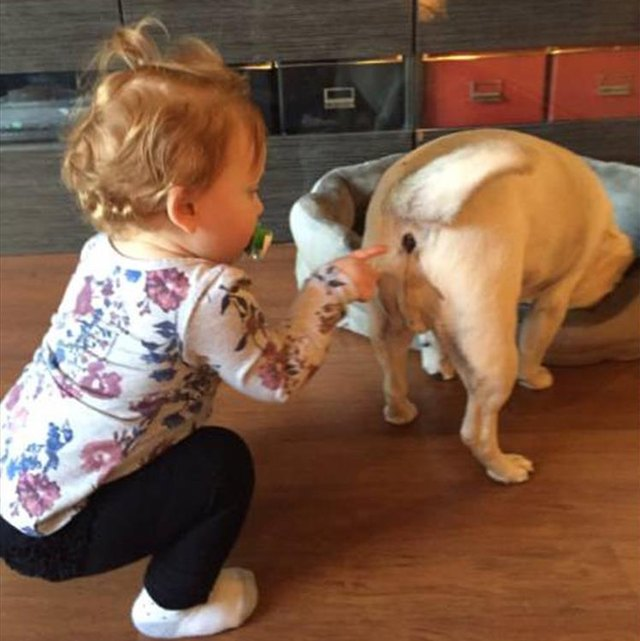 Curious Toddler Is About To Make An Astounding Discovery