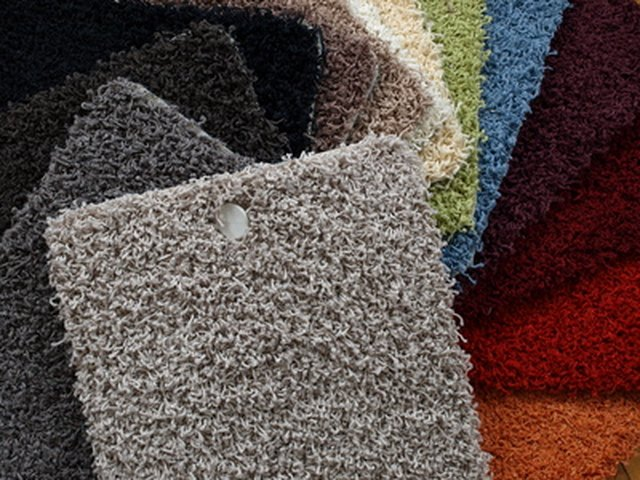 The Best Carpets for Pets