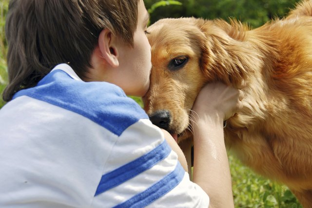 The Best Dog Breeds For Autistic Children Cuteness