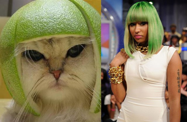 Limecat meme looks like singer Nicki Minaj