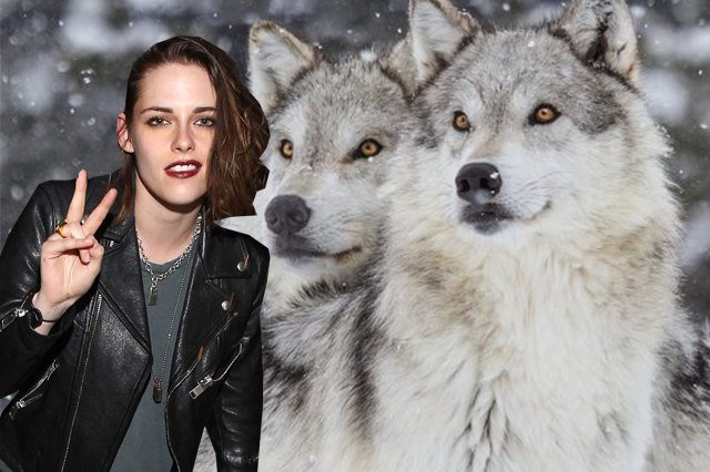 Here Are The Weirdest Dang Celebrity Pets