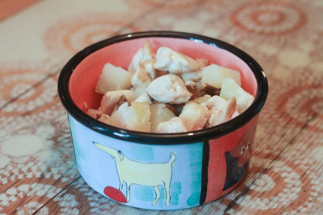 Recipe For Homemade Food For Cats With Kidney Disease