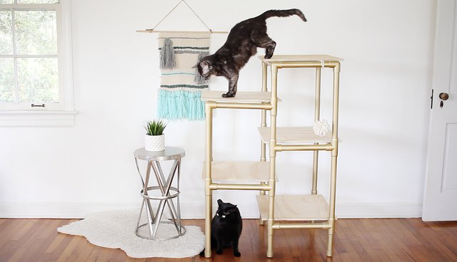 Make A Modern Cat Tree Out Of Pvc Pipe Cuteness