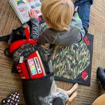 21 Adorable Pictures of Dogs Helping Kids Read