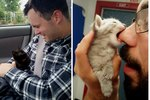 Here Are 16 Cute Fluff Balls To Help Convince Your Husband To Adopt A Kitten