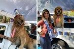 This Dog Mayor's Birthday Party Was The Purest Thing