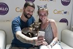 Everything You Need to Know About CatCon 2019