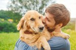 Why Are Dogs So Loyal To Humans?