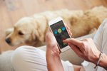 The Best Adoption Apps To Help You Find Your Dream Dog
