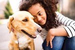 Do Dogs Recognize Faces?