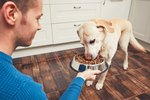 How to Make Homemade Dog Food for Dogs with Allergies