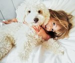 The Best Poodle Mix for Kids