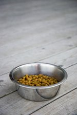 The Best Dog Foods for a Great Pyrenees