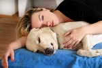 Study Finds That Women Sleep Better When They Sleep Next to a Dog