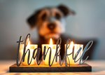 How Do Dogs Say Thank You?