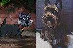 7 Disney Dogs and Their Real-Life Doppelgangers