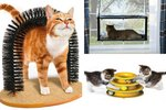 9 Toys and Treats For The Cat That Hates Everything