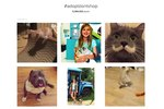 Here's How Social Media Has Changed 1000s of Animals' Lives