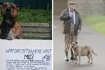 Here's How Britain's Loneliest Dog Became A Movie Star