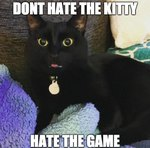 These Black Cat GIFs Will Give You 9 Lives
