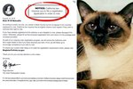 This Happened: A Dead Cat Was Asked To Register To Vote In CA