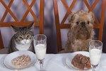 Domestication and Animal Behavior