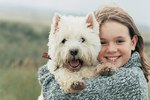 Facts About Westie Dogs