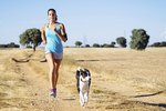 Good Dogs For Long Distance Runners