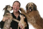 Meet Writer Larry Kay of Positively Woof