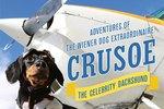 Cuteness Interviews Crusoe the Celebrity Dachshund