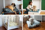 13 Creative DIY Pet Beds