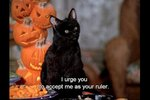 "15 Reasons Salem From ""Sabrina, The Teenage Witch"" Ruled"