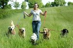 How to Run a Dog Kennel