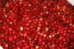 Cranberry for Urinary Tract Infection in Dogs