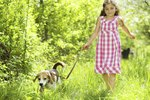 The Best Small Breed Dog for Children