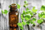 Is Peppermint Oil Harmful to Cats?