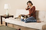 How to Get Rid of Dog Odor in the House
