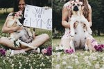 This Dog's Dreamy Maternity Photos Will Remind You The Clock Is Ticking
