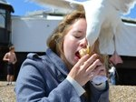 23 Animals Who Have Decided To Share Your Food