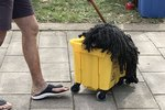 Dog Cosplaying As Bucket & Mop Wins ALL The Halloween Trophies