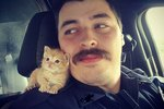 Kitten Confuses Epic Mustache For Mother & Finds Forever Home