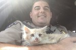California Highway Patrol Save A Kitten Trapped On The Golden Gate Bridge
