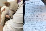 This Puppy Was Left Behind With A Touching Note After His Owner Fled Her Home