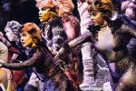 An Excited Service Dog Chases An Actor During A Broadway Performance Of 'Cats'