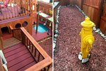 Awesome Dad Spends 3 Years Building Epic Dog Palace Complete With Pool