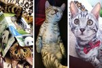 Literally Just 17 Of The Most Adorable Bengal Pictures We've Ever Seen