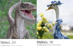 Just 19 Hilarious Profiles That Prove Tinder Is Better With Animals