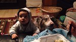 Mom Trying To Bribe Baby To Say 'Mama' Gets An Unexpected Response From The Dog