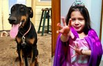 Girl Uses All Of Her Superpowers To Raise Money For A Service Dog